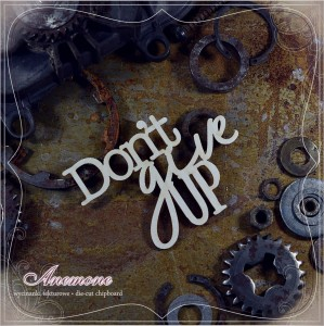 Anemone - napis DON'T GIVE UP