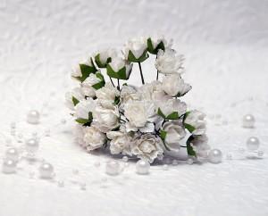 Goździki ok 1,5 cm, 12 sztuk, białe