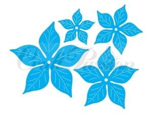 Komplet wykrojników kwiaty - gwiazda betlejemska